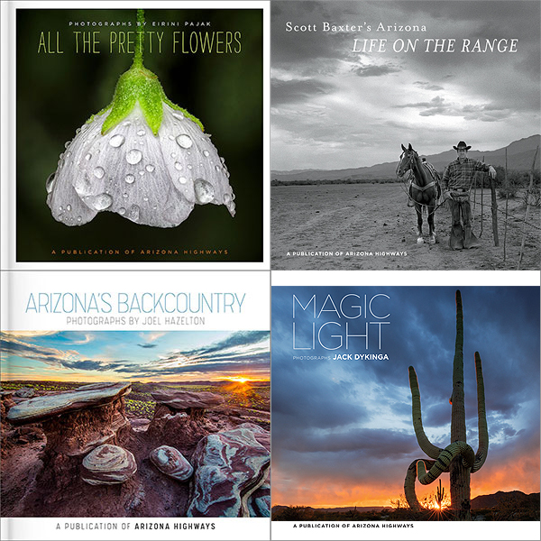 Set of Four Photography Gift Books