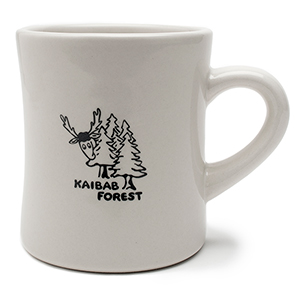 Kaibab Forest