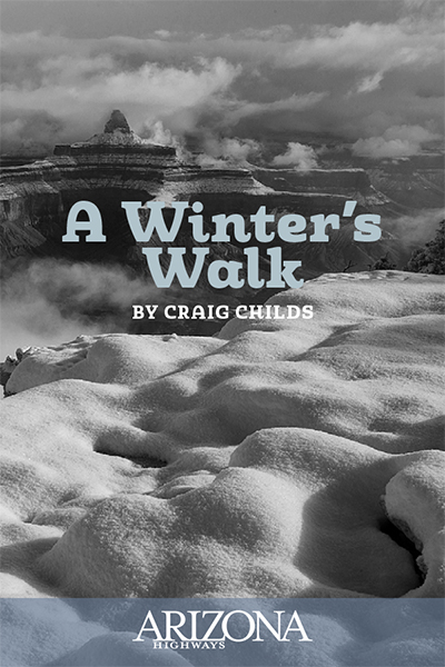 A Winter's Walk by Craig Childs