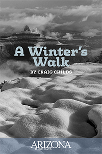 Winter's Walk by Craig Childs